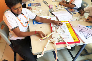 students learning about Skeleton system 5